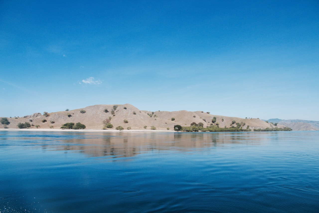 Everything you need to know about visiting Komodo Island
