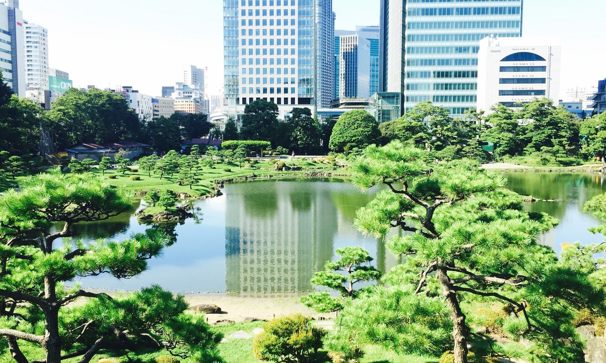 How to have a relaxing holiday in Tokyo