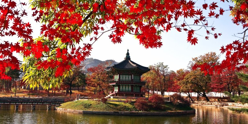 South Korea is a great place for an autumn holiday. There are plenty of spots to enjoy the fiery reds and oranges of fall, and have a taste of the country's rich culture and tradition. This itinerary takes you in and around Seoul, then guides you to venture out into the countryside where you'll see South Korea's best spots for autumn.