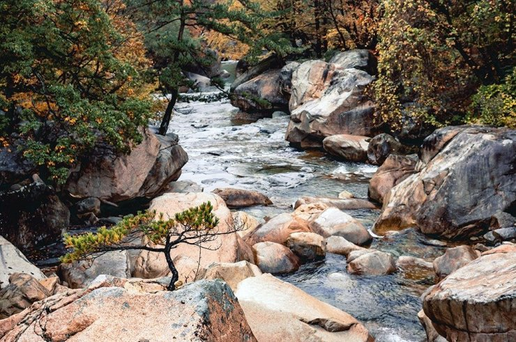Spend the vibrant autumn season in South Korea's gorgeous mountain – Seoraksan. The rocky landscape offers lots of scenic mountain peaks, waterfalls, and streams – sure to take your breath away.