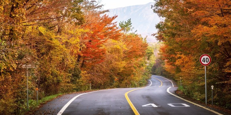 Driving in South Korea is a fun way to discover the country. Get behind the wheel and discover the small towns and amazing countryside lying just outside Seoul and Busan. Here's what you need to know for an amazing road trip in South Korea.
