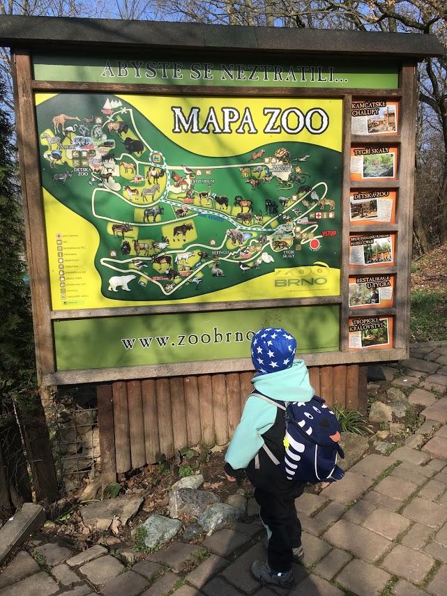 zoo brno