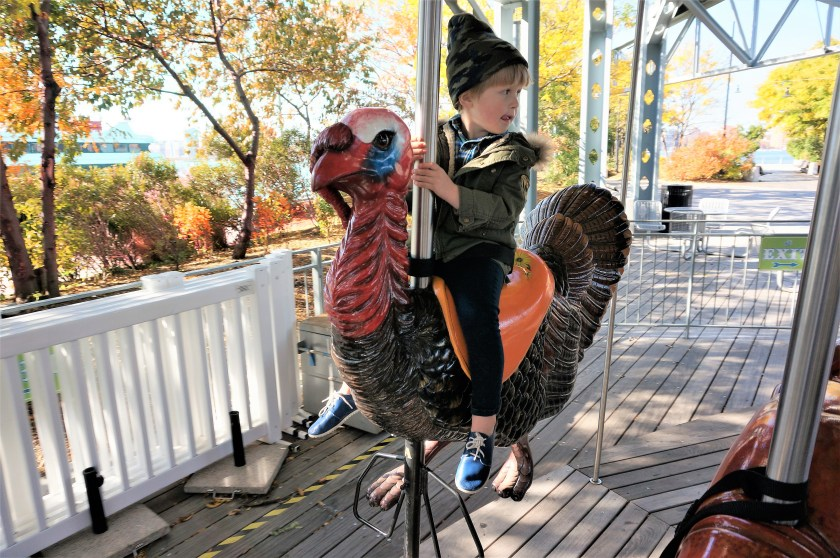 turkey-at-pier-62-carousel