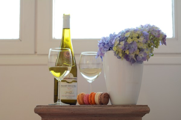 France Brittany Roscoff Our French Adventure Week one Hydrangeas wine and macarons