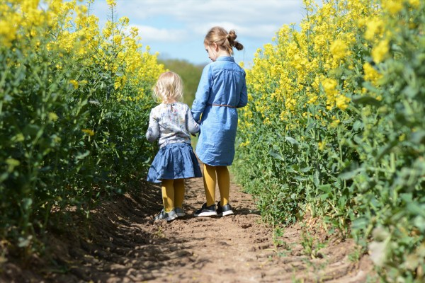Sisters Siblings rapeseed