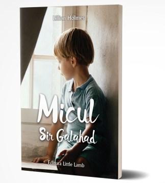 Micul Sir Galahad 3D
