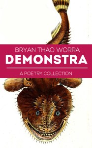 Demonstra_cover