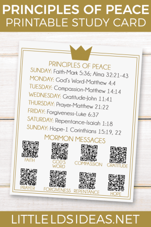 Principles of Peace Study Card