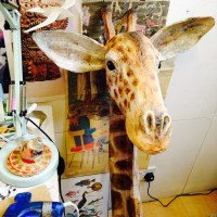 Heirloom Children's Gifts: Beautiful Papier-Mâché Animal Heads by Lewes Artist Emily Warren