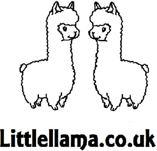 Blog with Little Llama