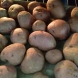 Idaho potatoes – hash browns
