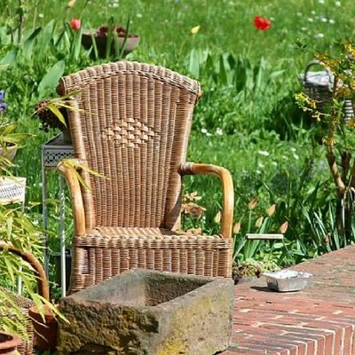 Improving Your Overall Wellness Through Gardening