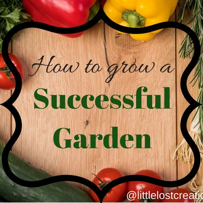 How to Plant and Grow a Successful Garden