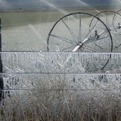 Winter Prep Tips for Homesteaders