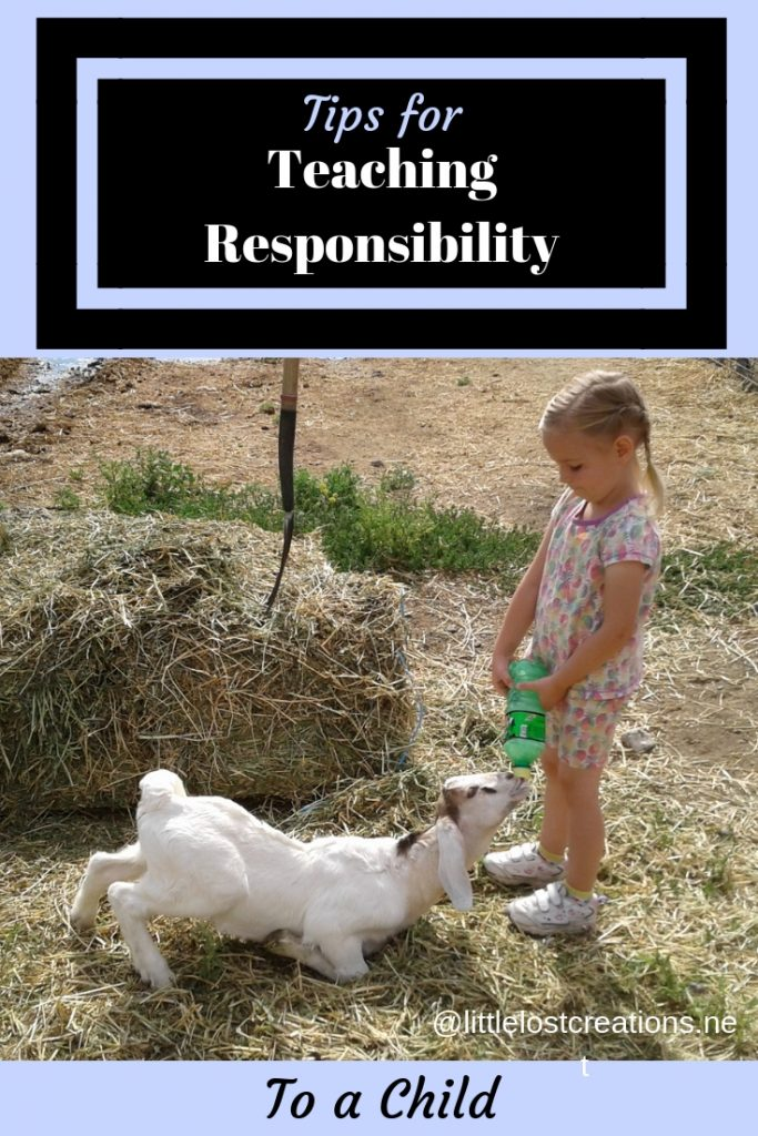 Teaching responsibility to a child, little girl feeding a baby goat a bottle