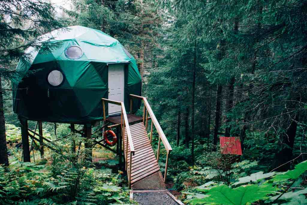 Photo of an eco dome in the forest. An ecolodge.
