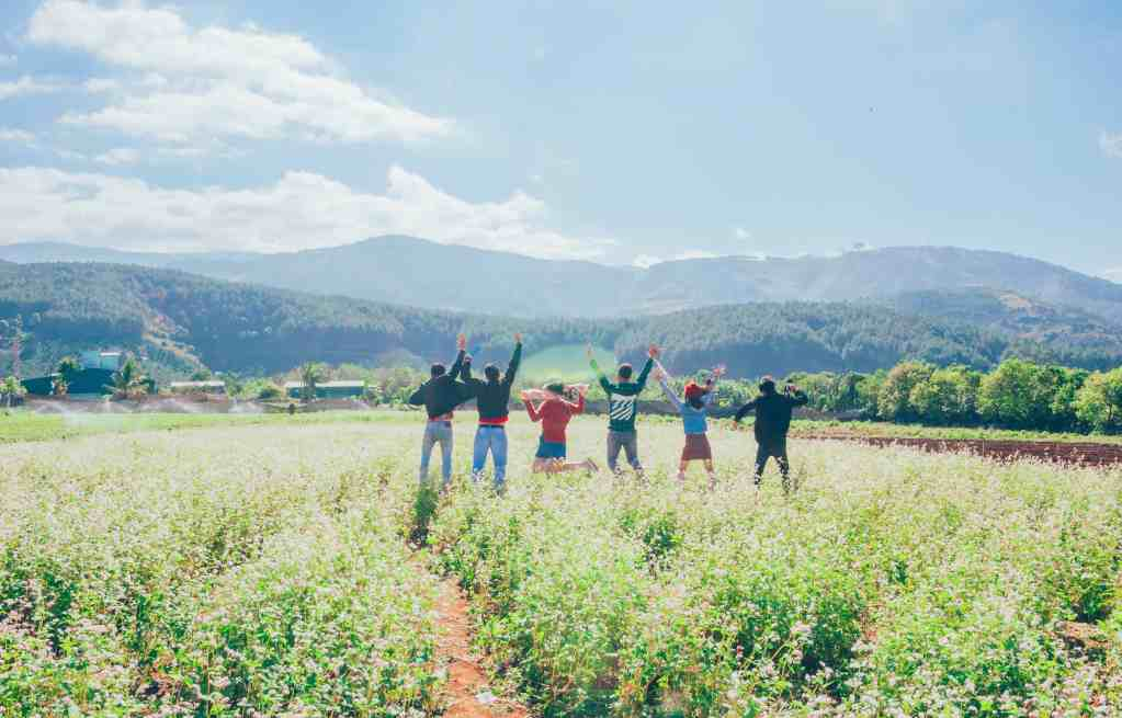 Six people on a WWOOF farm with their backs to the camera jumping in the air.