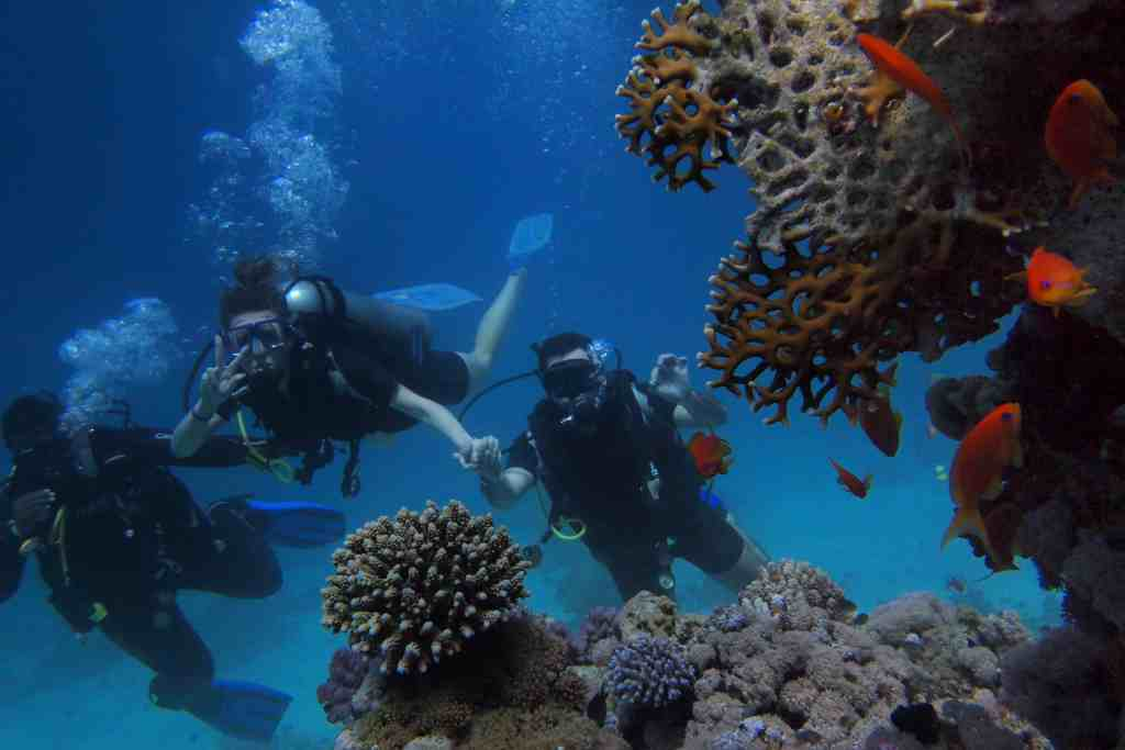 Three people snorkeling for What Does Sustainable Travel Mean and Why Does It Matter?