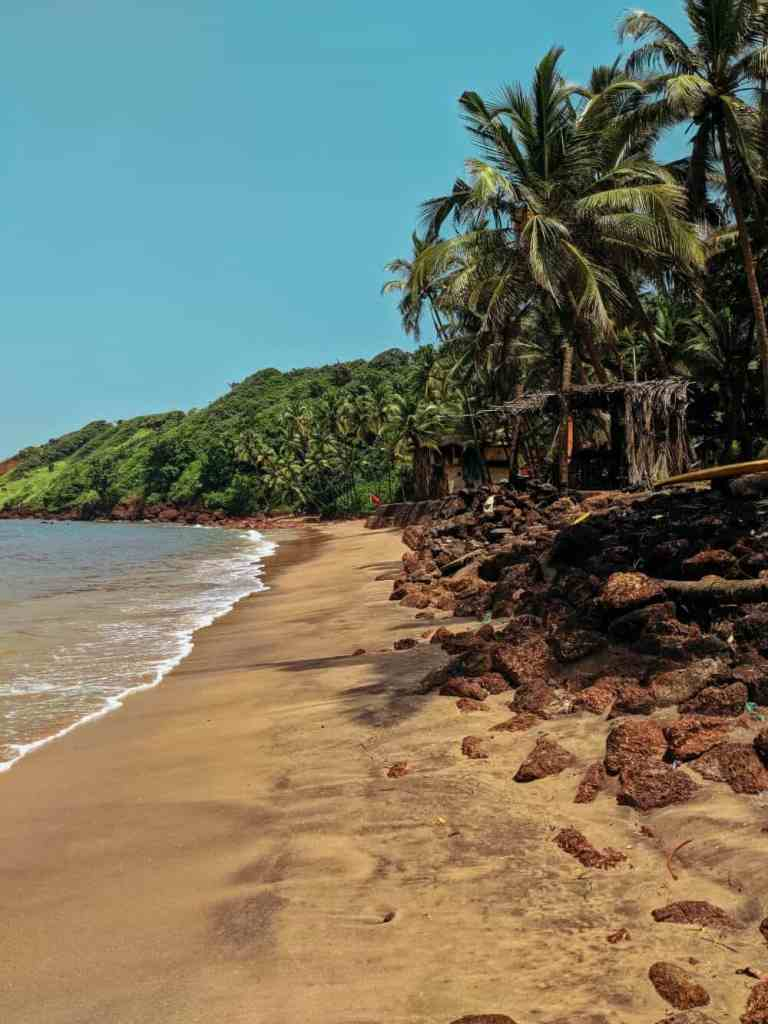 tropocal beach for environmental guilt