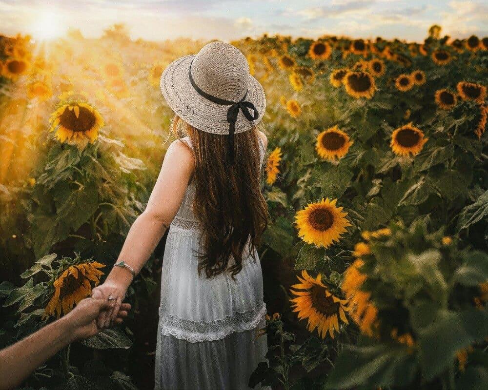 Girl walking through sunflowers