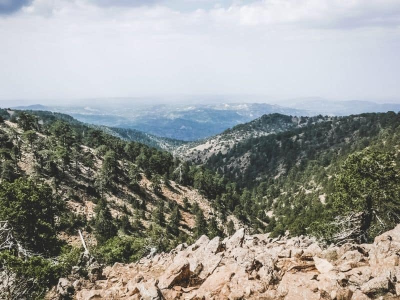 The valley down the Troodos Mountains. It has an alpine feel to it.