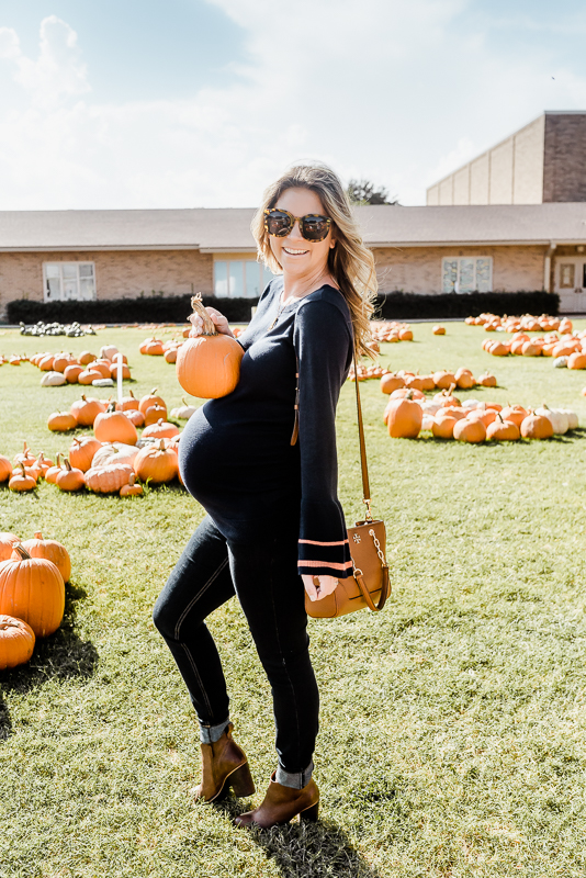 fall maternity pumpkin photo