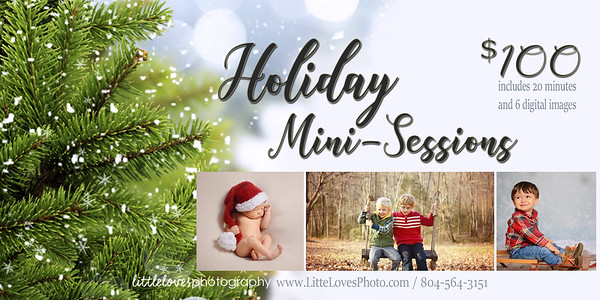 Holiday Mini Session {2017}