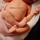 BL H newborn 7695