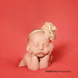 BL H newborn 7808