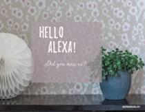 Hello Alexa! Did You Miss Us?