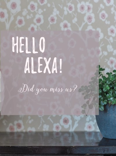 Alexa, Did you miss us?