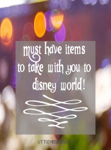 Must Have Items To Take With You When Going to Disney World