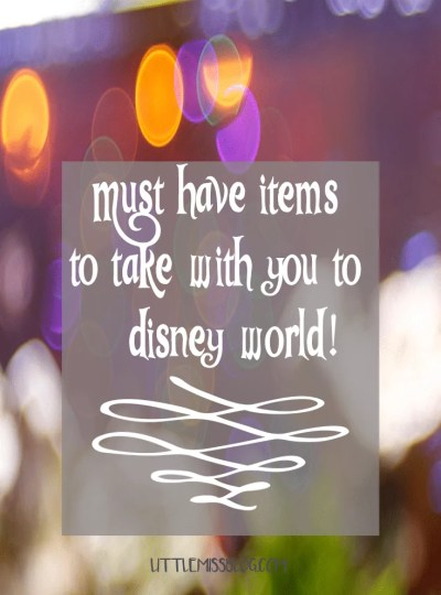 Must have items to take with you to Disney World. Saving you time and money!