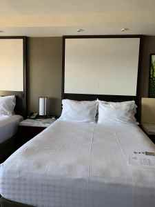 Rooms at Contemporary Resort