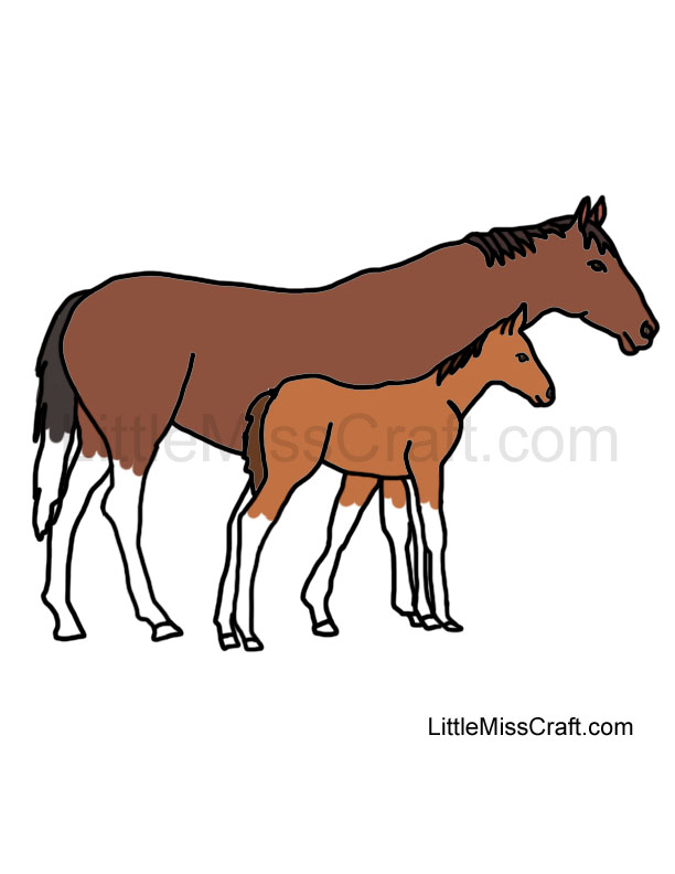 download download baby horse coloring pages