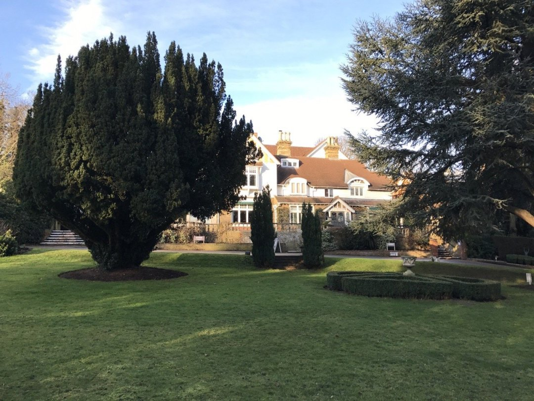 Afternoon Teas in Essex Rowhill Grange