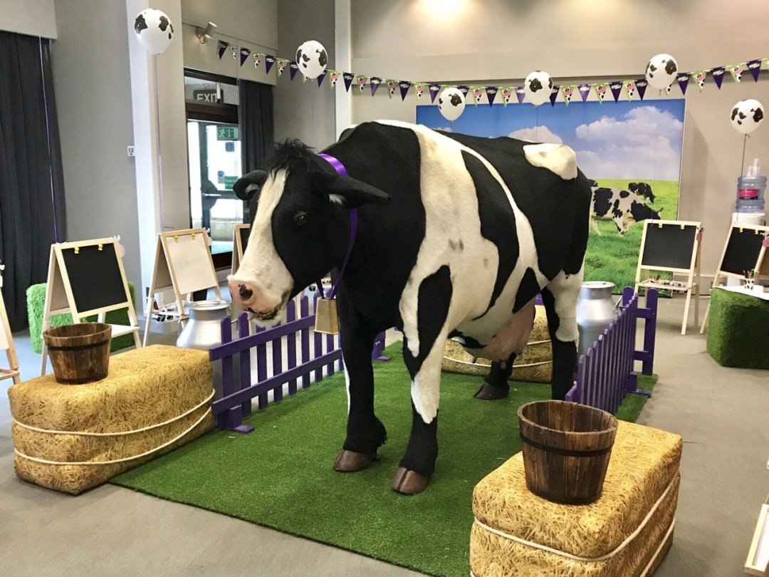 Cadbury's Adopt a Cow Buttons the cow