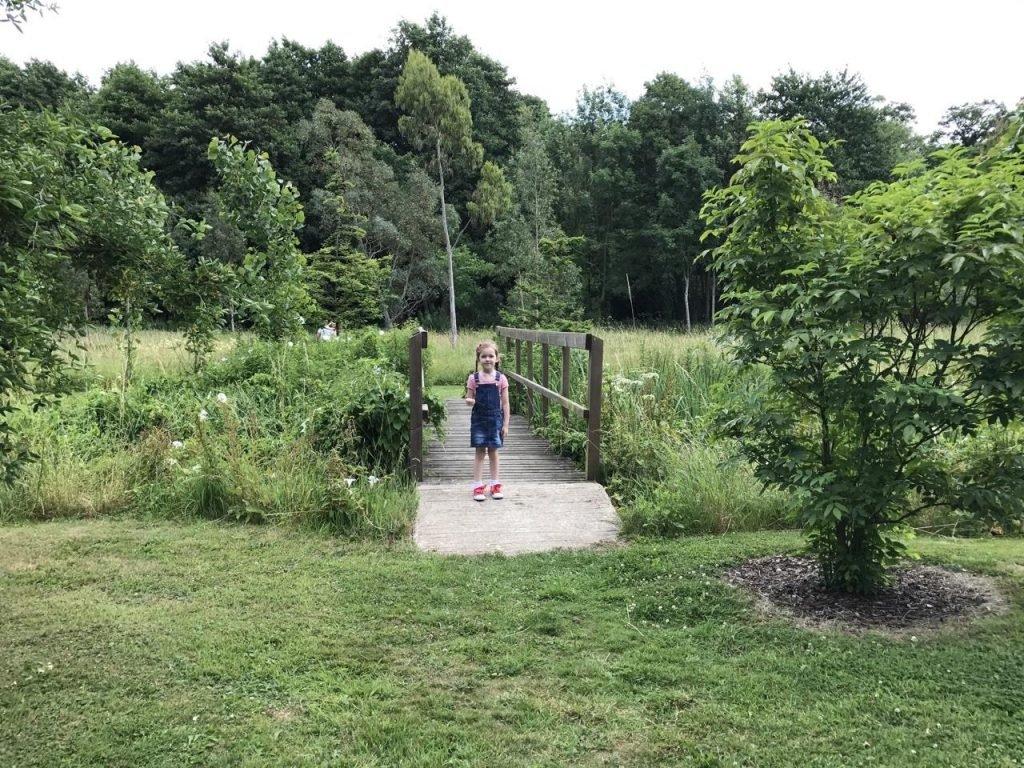 Lullingstone Castle woodland walk