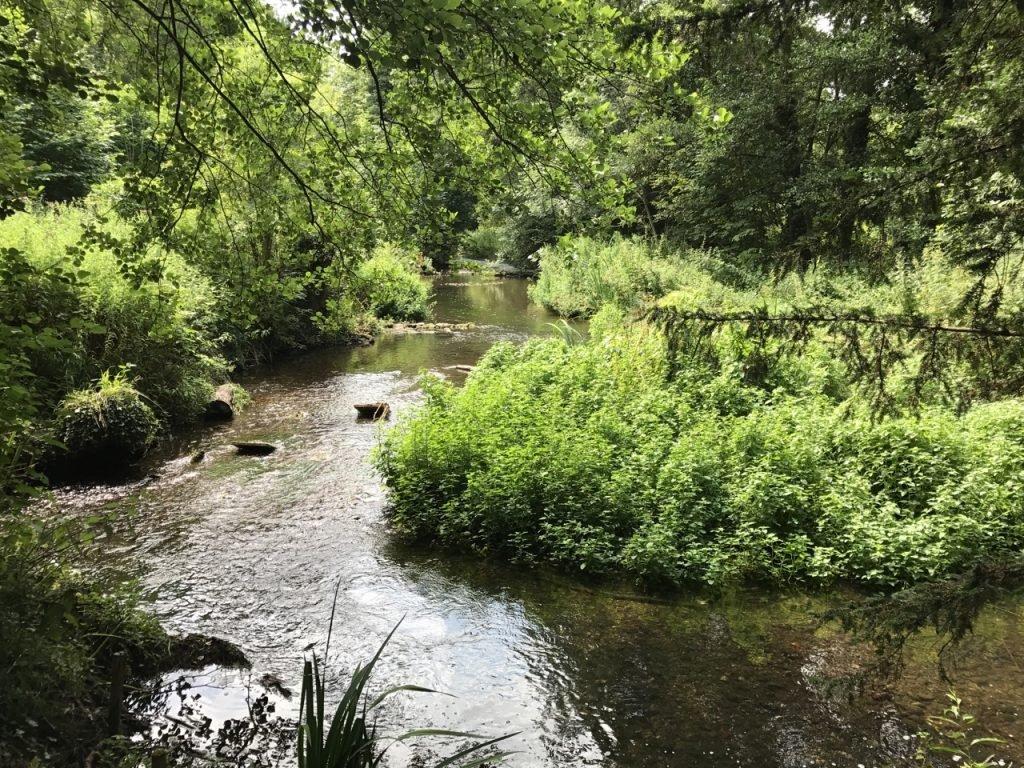 Lullingstone Castle river