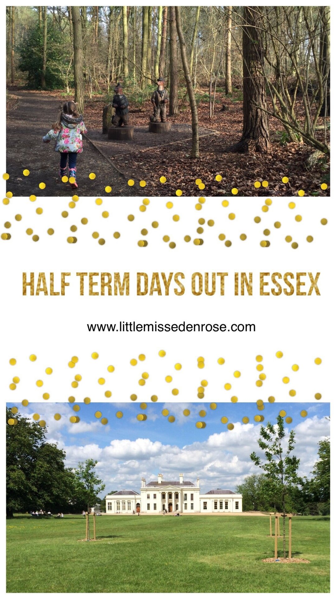 Half term days out in Essex - kids days out in Essex