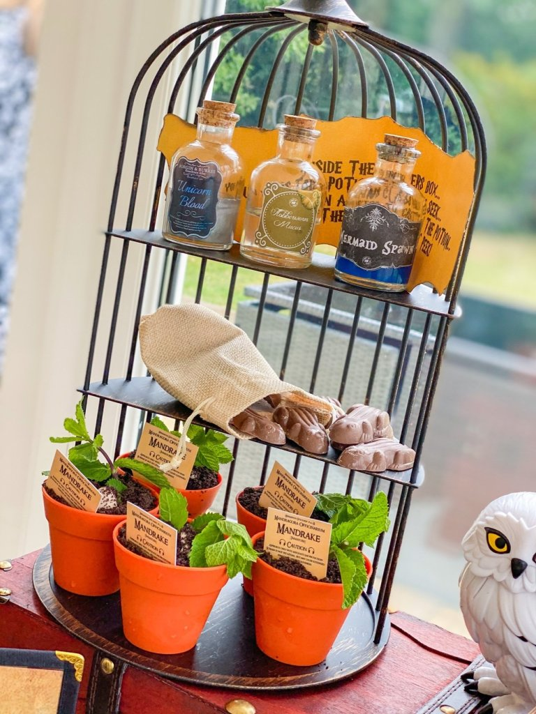Bird cage cake stand with chocolate frogs, potion bottles and cakes in plant pots from Wizards Afternoon Tea in Essex
