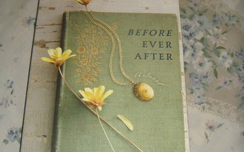 BOOK REVIEW: BEFORE EVER AFTER