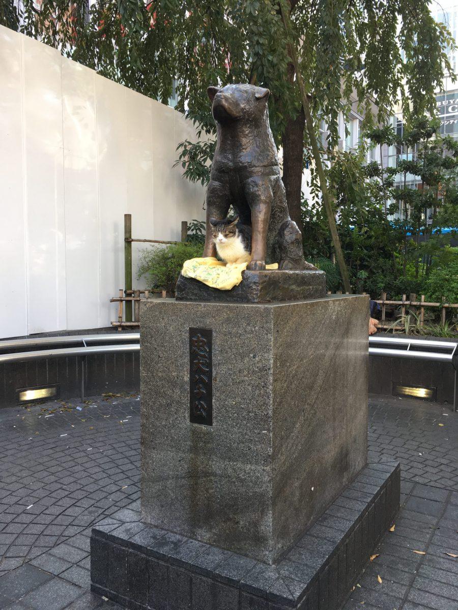 Accessible Hachiko statue in Shibuya, Tokyo