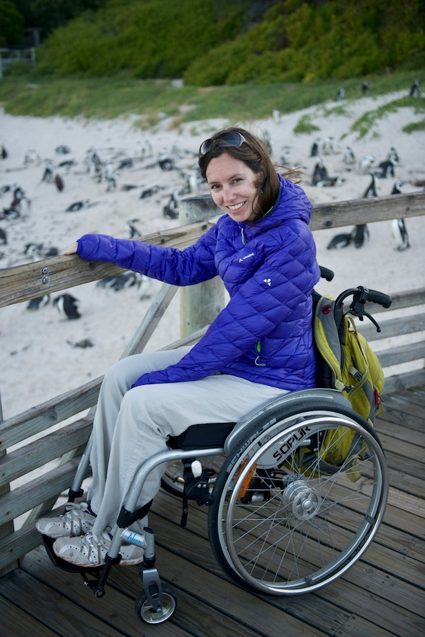 Wheelchair accessible penguin viewing area