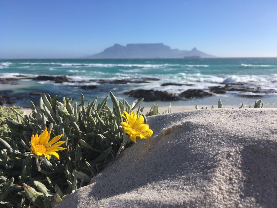 Table Mountain seen from Blouberg Beach