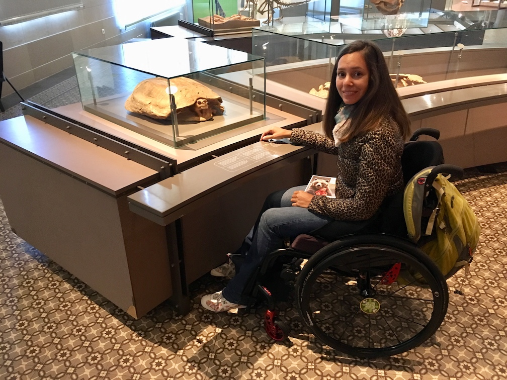 Accessible Museum of Natural Sciences Brussels | Little Miss Turtle | Accessible Travel Blog