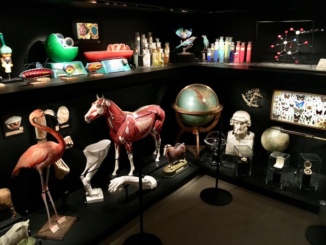 Expo Musée L Louvain-La-Neuve | Little Miss Turtle | Accessible Travel Blog