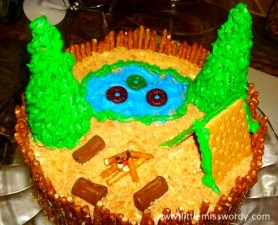 Campfire Cake, Camping Birthday