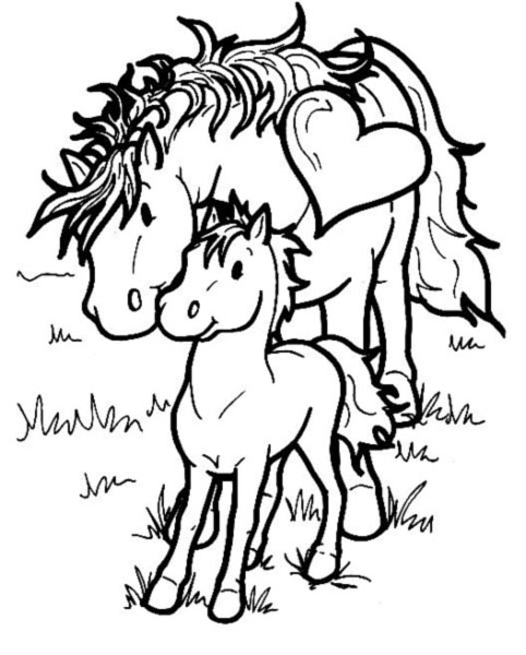 Coloriage cheval 7