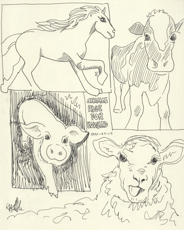 Farm Animal Sketches for Toddler